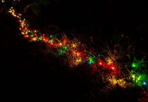 solar light in christmas tree